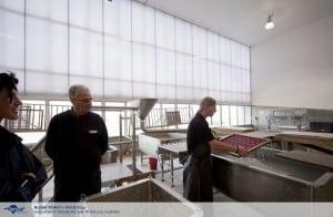 Burnie-Maker's-Workshop_0888